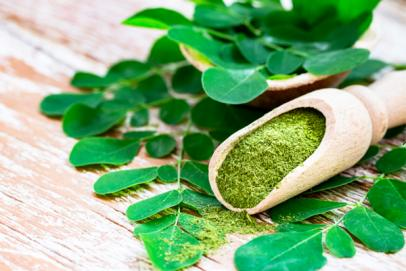 Le moringa : super-aliment ayurvédique